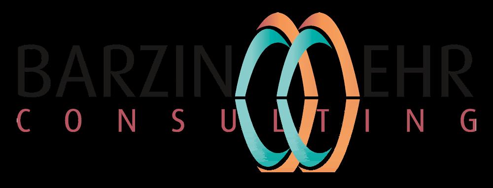 Barzinmehr Consulting